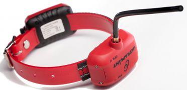 Ultracom Koira-GPS -panta lyhyt, 2 akulla